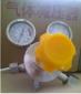 不锈钢单级压力调节器